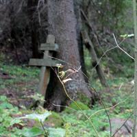 Кладбище при часовне Николая Чудотворца в Каменьнаволоке - фото №1